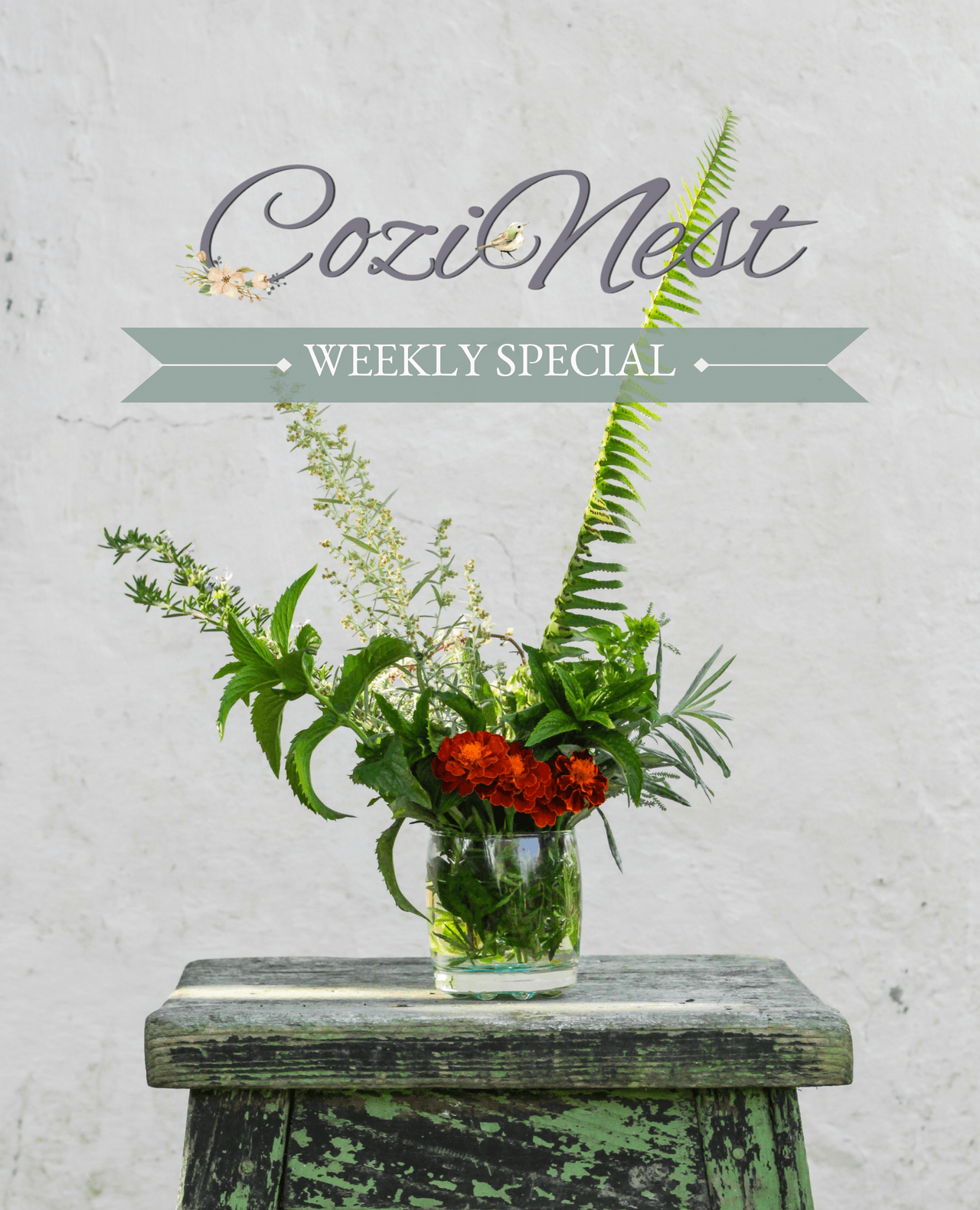CoziNest Weekly Special 3/26/18 Just in Time for Easter