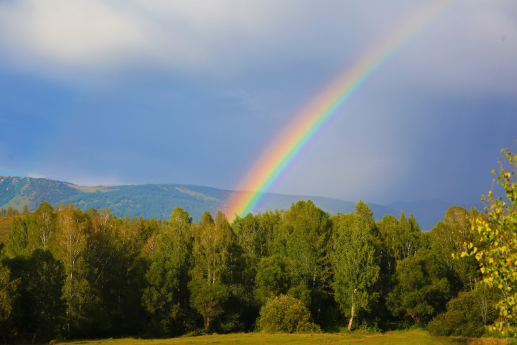 rainbow a sign of promise